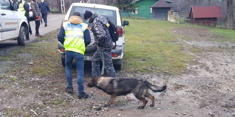 La investigarea tehnico-științifică a locului faptei a fost adus și un câine de urmă. Foto ZiaruldeIași